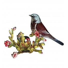 Décoration murale oiseau grive litorne bois Latin Lover