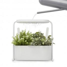 Mini jardiniere d interieur plantes aromatiques metal blanc umbra giardino