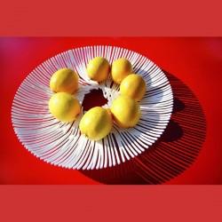 CORBEILLE A FRUITS DESIGN ANEMONE blanc