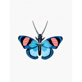 papillon paon du jour decoration murale en carton studio roof