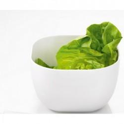 Saladier carré design porcelaine blanche asa cucina 24 cm