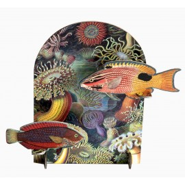 studio roof pop out card decoration en carton poissons extravaganza