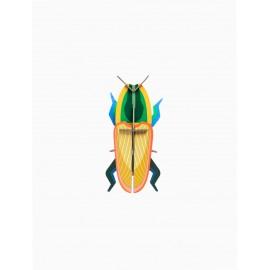 insecte deco murale studio roof scarabée de madagascar