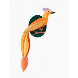 studio roof olango paradise oiseau decoration murale en carton