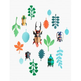 studio roof mur de curiosites insectes carton antiquaire de scarabées