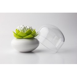 Boîte à coton tiges design lotus Qualy vert