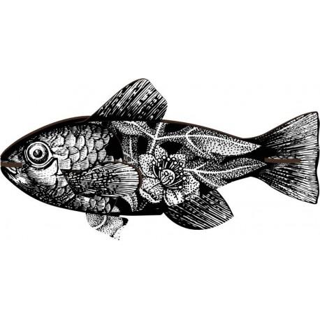 miho poisson decoratif noir et blanc vertigo