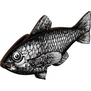 decoration murale poisson noir et blanc miho casablanca